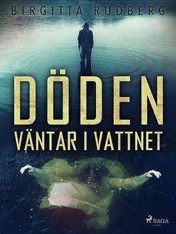 Rudberg, Birgitta - Döden väntar i vattnet, ebook