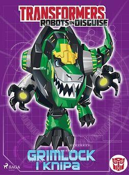 Sazaklis, John - Transformers - Robots in Disguise - Grimlock i knipa, e-bok