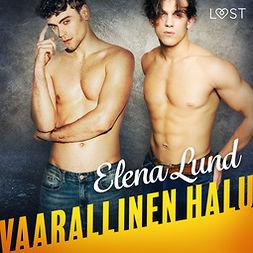 Lund, Elena - Vaarallinen halu - eroottinen novelli, audiobook