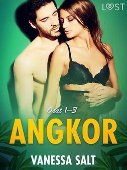 Salt, Vanessa - Angkor osat 1-3: eroottinen novellikokoelma, e-kirja