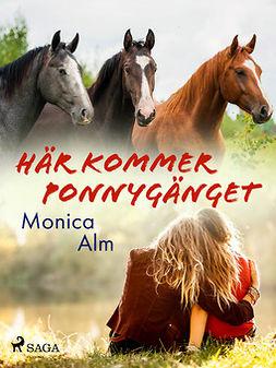 Olausson, Rune - Här kommer Ponnygänget, ebook