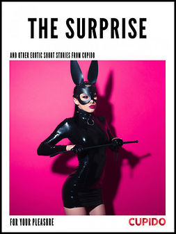 - The Surprise - and other erotic short stories, ebook