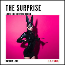 Anderson, Alessandra - The Surprise - and other erotic short stories from Cupido, audiobook