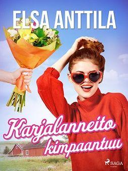 Anttila, Elsa - Karjalanneito kimpaantuu, e-kirja