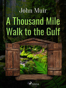Muir, John - A Thousand Mile Walk to the Gulf, ebook