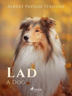 Terhune, Albert Payson - Lad: A Dog, ebook