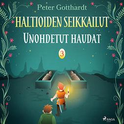 Gotthardt, Peter - Haltioiden seikkailut 3 - Unohdetut haudat, audiobook
