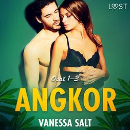 Salt, Vanessa - Angkor osat 1-3: eroottinen novellikokoelma, äänikirja