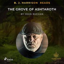 Buchan, John - B. J. Harrison Reads The Grove of Ashtaroth, äänikirja