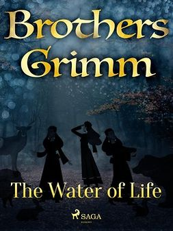 Grimm, Brothers - The Hut in the Forest, ebook