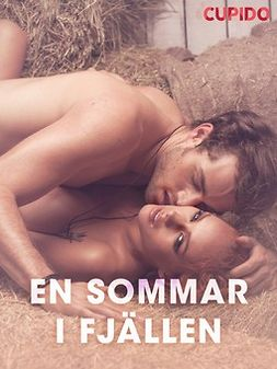 Eklund, Emelie Robin - En sommar i fjällen - erotiska noveller, ebook