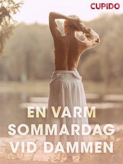 Bohman, Marcus - En varm sommardag ved dammen - erotiska noveller, ebook
