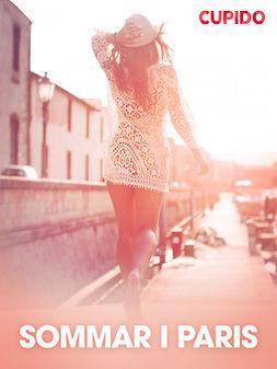 - Sommar i Paris - erotiska noveller, ebook
