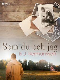Hermansson, B. J. - Som du och jag, ebook