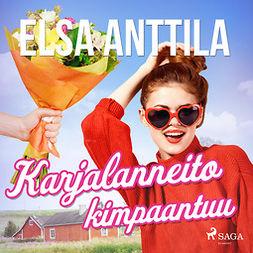 Anttila, Elsa - Karjalanneito kimpaantuu, äänikirja