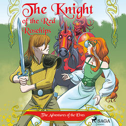 Gotthardt, Peter - The Adventures of the Elves 1 - The Knight of the Red Rosehips, audiobook