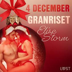 Storm, Elise - 4 december: Granriset - en erotisk julkalender, audiobook