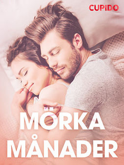 Bohman, Marcus - Mörka månader - erotiska noveller, ebook