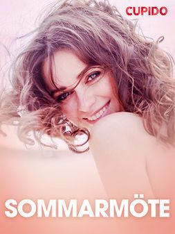 Bohman, Marcus - Sommarmöte - erotiska noveller, ebook