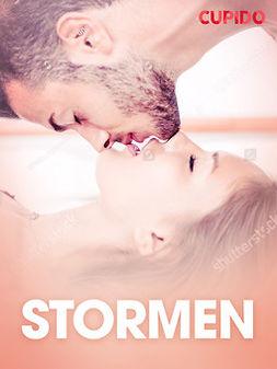 Bohman, Marcus - Stormen - erotiska noveller, ebook