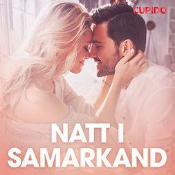 Gustafsson, Johan - Natt i Samarkand - erotiska noveller, äänikirja
