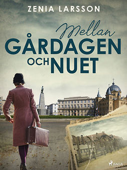 Larsson, Zenia - Mellan gårdagen och nuet, e-kirja