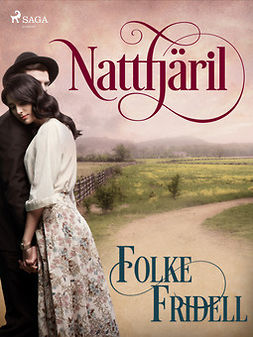 Fridell, Folke - Nattfjäril, ebook