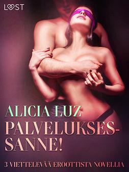 Luz, Alicia - Palveluksessanne! - 3 viettelevää eroottista novellia, e-kirja