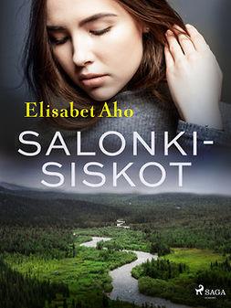 Aho, Elisabet - Salonkisiskot, ebook