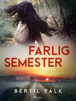 Falk, Bertil - Farlig semester, ebook