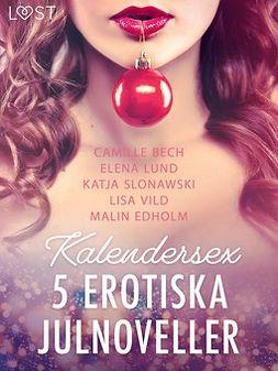 Edholm, Malin - Kalendersex - 5 erotiska julnoveller, ebook
