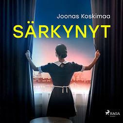 Koskimaa, Joonas - Särkynyt, äänikirja