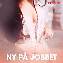 Åsmark, Iris - Ny på jobbet - erotiska noveller, äänikirja