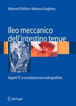 Mizio, Roberto - Ileo meccanico dell'intestino tenue, ebook