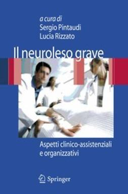 Pintaudi, Sergio - Il neuroleso grave, ebook