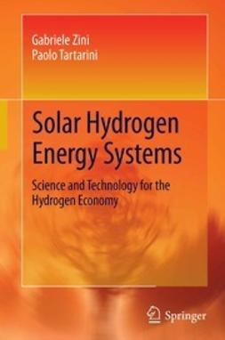 Zini, Gabriele - Solar Hydrogen Energy Systems, ebook