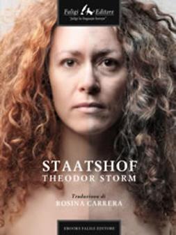 Storm, Theodor - Staatshof, ebook