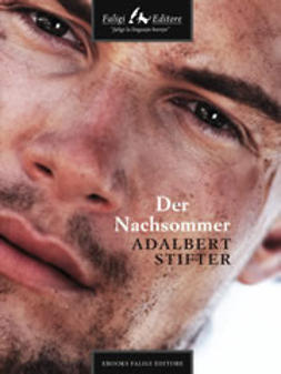 Stifter, Adalbert - Der Nachsommer, ebook