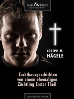 Hägele, Joseph M. - Zuchthausgeschichten von einem ehemaligen Züchtling Erster Theil, ebook