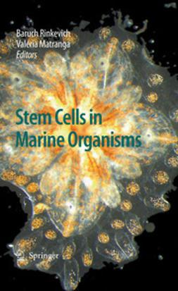Stem Cells in Marine Organisms