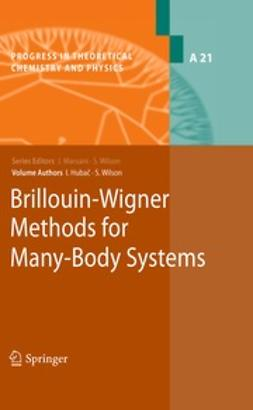 Hubac, Ivan - Brillouin-Wigner Methods for Many-Body Systems, ebook