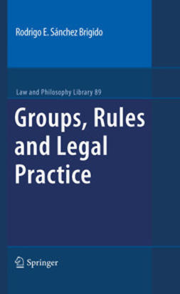 Brigido, Rodrigo Eduardo Sánchez - Groups, Rules and Legal Practice, ebook