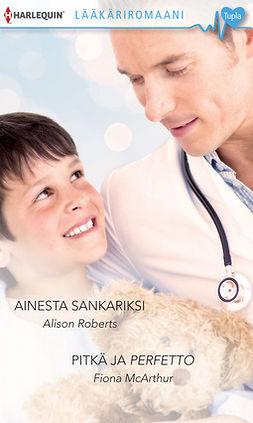 Roberts, Alison - Ainesta sankariksi / Pitkä ja perfetto, e-kirja