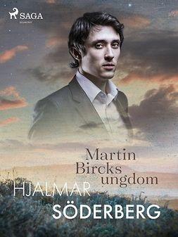 Söderberg, Hjalmar - Martin Bircks Ungdom, ebook