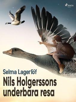 Lagerlöf, Selma - Nils Holgerssons underbara resa, ebook