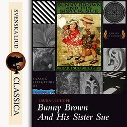 Hope, Laura Lee - Bunny Brown and his Sister Sue, audiobook