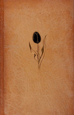 Dumas, Alexandre - The Black Tulip, e-kirja