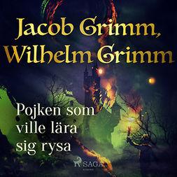 Grimm, Jacob - Pojken som ville lara sig rysa, audiobook