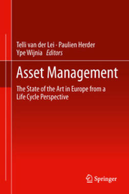Lei, Telli Van  der - Asset Management, ebook
