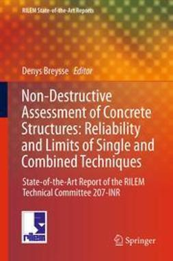 Breysse, Denys - Non-Destructive Assessment of Concrete Structures: Reliability and Limits of Single and Combined Techniques, ebook